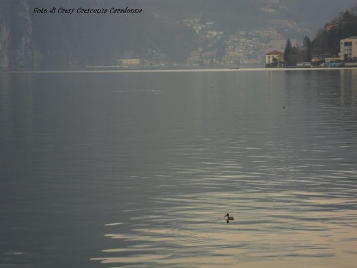Lago di Lugano Svizzera Di CresyCrescenza@