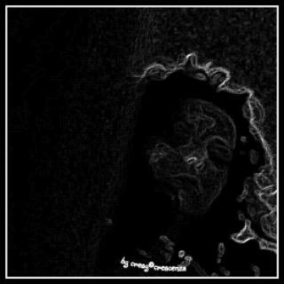 wpid-picsart_11-15-02.02.50.jpg